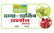 Agrowon-Grapes-Pomegranate-Expo-2016-Logo